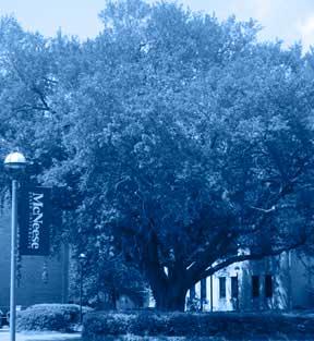 oak-tree-blue-3